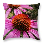 Purple Cone Flower With Bee Throw Pillow