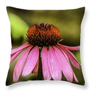 Purple Coneflower - Single Throw Pillow