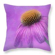 Purple Coneflower - Echinacea Purpura Throw Pillow