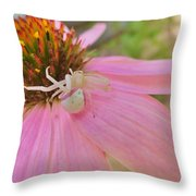 Purple Coneflower With Crab Spider Throw Pillow