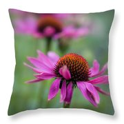 Purple Coneflowers In A Row Throw Pillow
