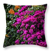 Purple Contrast Throw Pillow