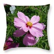 Purple Cosmos Throw Pillow