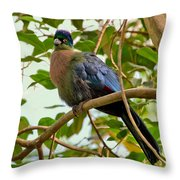 Purple-crested Touraco Throw Pillow