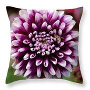 Purple Dahlia White Tips Throw Pillow