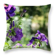 Purple Delight. Petunia Bloom Throw Pillow