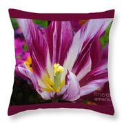 Purple Dual Coloured Tulip Throw Pillow