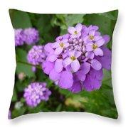 Purple Eye Candy That Pops Throw Pillow