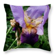 Purple Flower After Rainfall Throw Pillow by Doc Braham