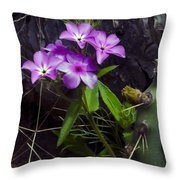 Purple Flower At Enchanted Rock Throw Pillow