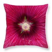 Purple Flower Extreme Macro Throw Pillow
