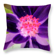 Purple Flower - Photopower 257 Throw Pillow