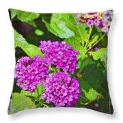 Purple Flowers A Throw Pillow
