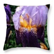 Purple Flowers In England Throw Pillow