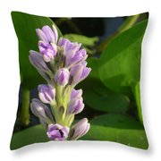 Purple Flowers In The Pantanal Throw Pillow