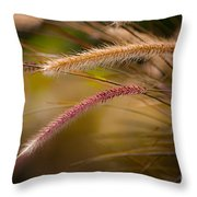Purple Fountain Grass Ornamental Decorative Foxtail Home Decor Print Throw Pillow