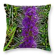 Purple Fringe On Bald Mountain In Ketchum-idaho Throw Pillow