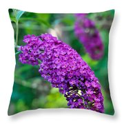 Butterfly Bush Garden Flower Throw Pillow