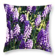 Purple Grape Hyacinth  Throw Pillow