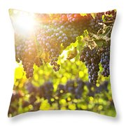 Purple Grapes In Sunshine Throw Pillow