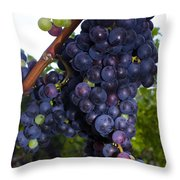 Purple Grapes Throw Pillow