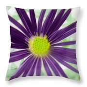Purple Haze - Photopower 2858 Throw Pillow