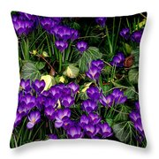 Purple Hearts Throw Pillow