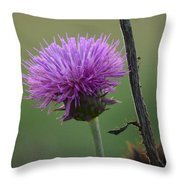 Purple In Nature Throw Pillow