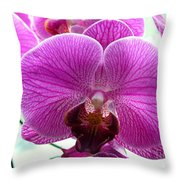 Purple Infusion Throw Pillow
