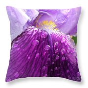 Purple Iris - 2 Throw Pillow