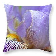 Purple Iris - 3 Throw Pillow