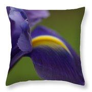 Purple Iris 9 Throw Pillow