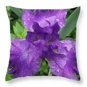 Purple Iris After The Rain Throw Pillow