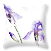 Purple Iris Glow Throw Pillow
