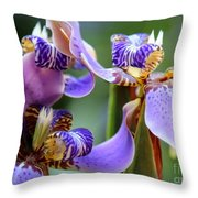 Purple Irises Closeup Throw Pillow