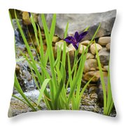 Purple Irises Growing In Waterfall Throw Pillow