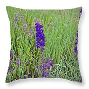 Purple Larkspur In A Meadow In Yellowstone National Park-wyoming Throw Pillow