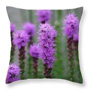 Purple Liatris Flowers Throw Pillow
