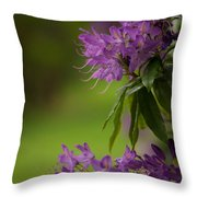 Purple Light Throw Pillow