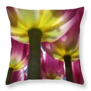Purple Lights Throw Pillow