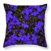 Purple Lobelia Throw Pillow