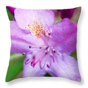 Purple Long Pistil Flower Throw Pillow