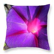 Purple Morning Glory - Flower Throw Pillow