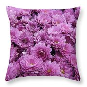 Purple Mums Throw Pillow