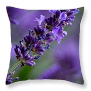 Purple Nature - Lavender Lavandula Throw Pillow