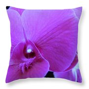 Purple Orchid 7 Throw Pillow