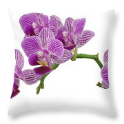 Purple Orchid-3 Throw Pillow