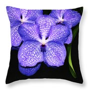 Purple Orchids - Flower Art By Sharon Cummings Throw Pillow