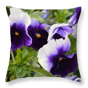 Purple Pansy Melody Throw Pillow