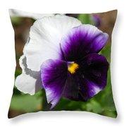 Purple Pansy Throw Pillow